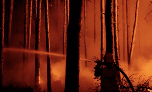 Fire Fighter Battles Forest Fire
